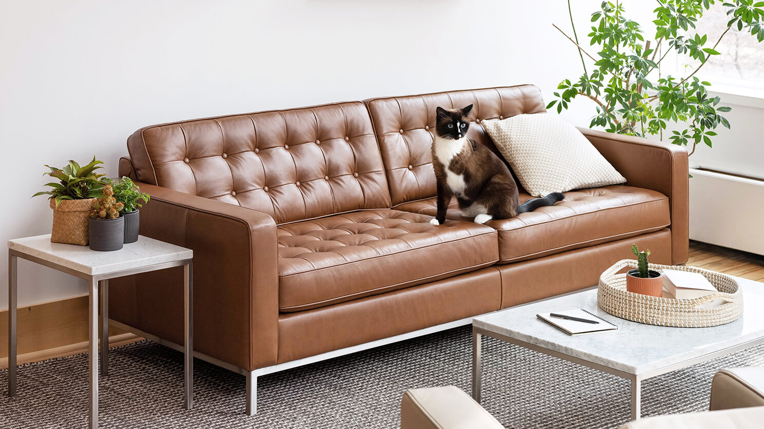 Reverie 86 Custom Sofa Modern Eq3